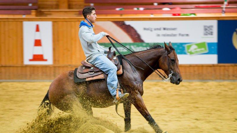 Découvrez le reining, discipline de l'équitation western