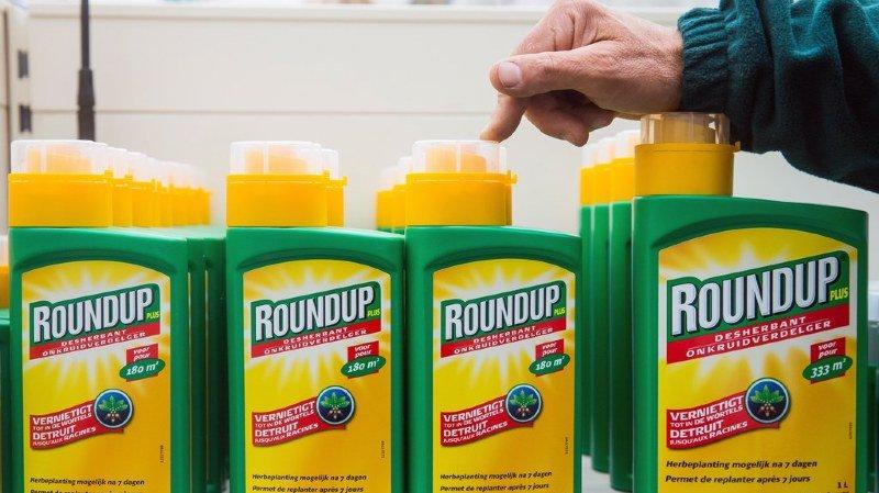 Pesticides: le glyphosate autorisé pour cinq ans de plus dans l'Union Européenne, les ONG scandalisées