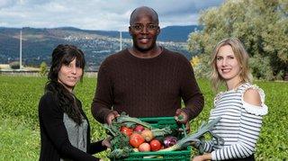 Des fruits et légumes de la région à votre porte