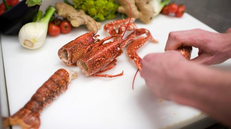 Les homards devront être étourdis avant d'être mis à mort. La pratique consistant à les plonger vivants  dans de l'eau bouillante ne sera plus autorisée.