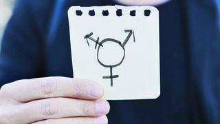 Transgenres et caisses en conflit