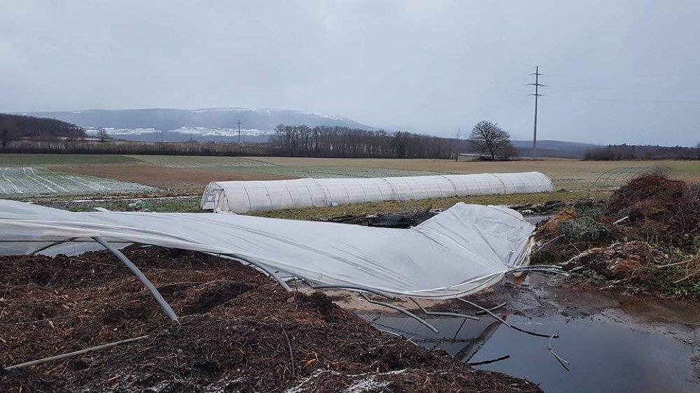 Les serres se sont affaissées sous l'effet des vents violents.