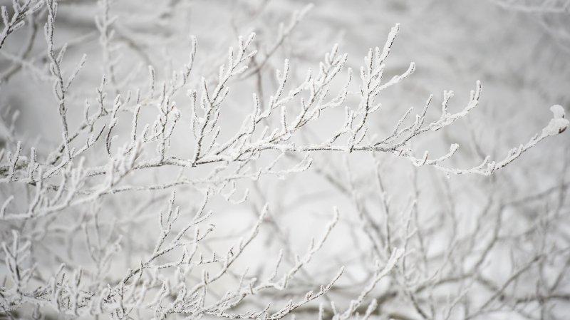 À la Brévine, le thermomètre affichait -27,2 degrés ce mardi à l'aube.