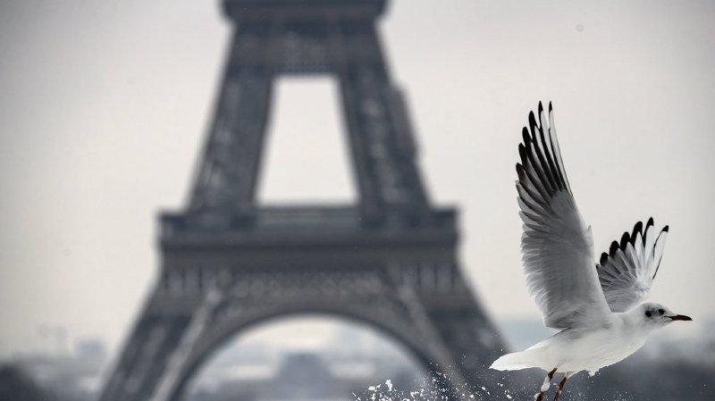 France: gelée, la tour Eiffel reste fermée deux jours au public