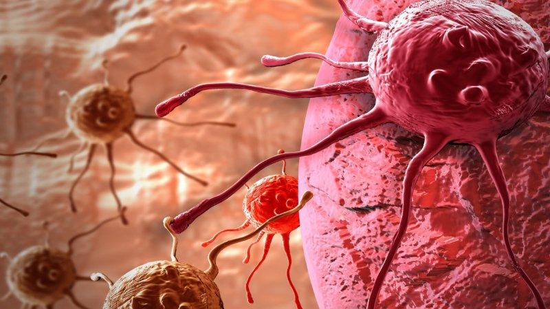 Le Centre de recherche translationnelle en onco-hématologie (CRTOH) a été inauguré lundi à Genève.