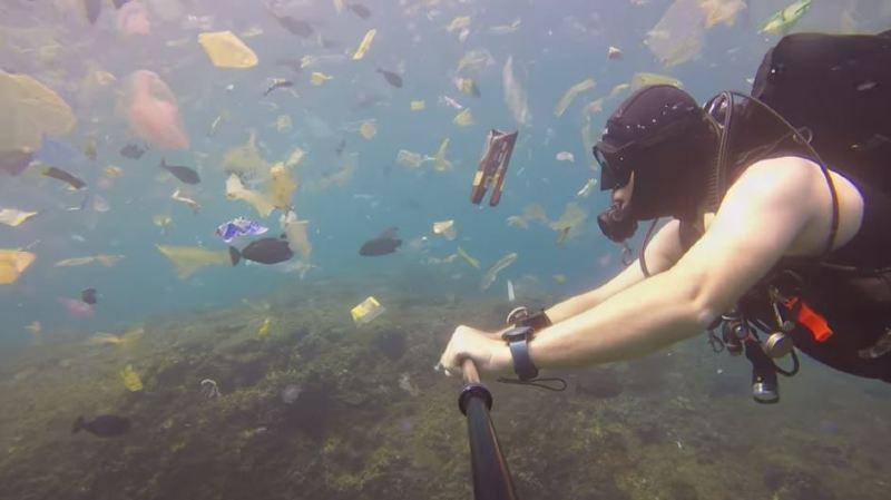 Il voulait plonger dans les eaux turquoise, il se retrouve dans un océan de déchets