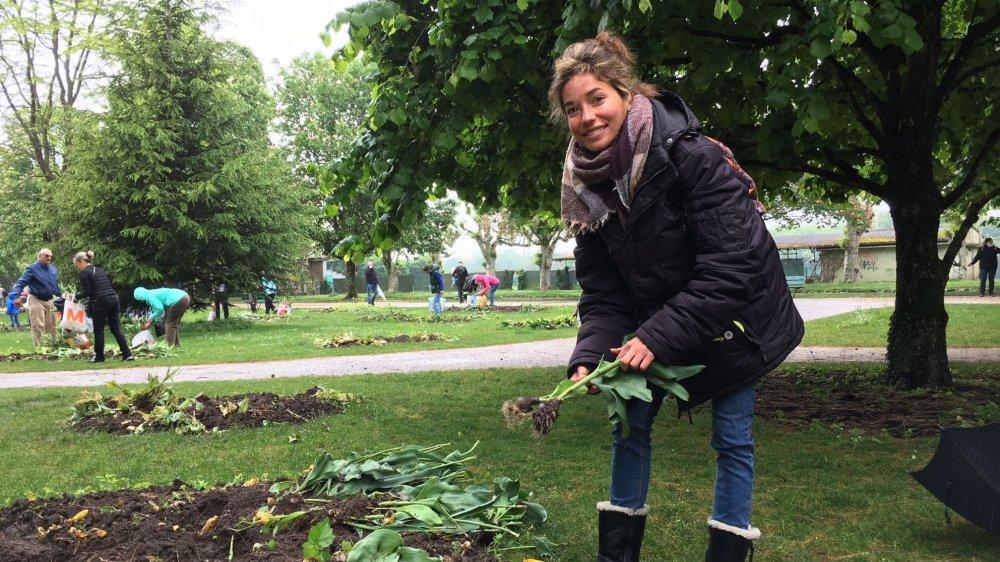 Stéphanie Solliard avait soigneusement préparé le ramassage des bulbes grâce à un plan rédigé auparavant