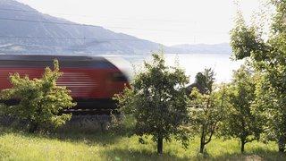 Prévention: les CFF veulent poser des clôtures entre Villeneuve et Genève pour empêcher les suicides