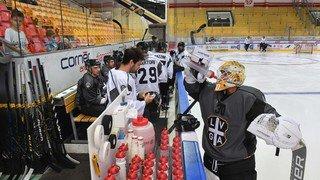 Hockey: à deux semaines de la reprise, le gardien de Lugano Merzlikins et son attaquant Sannitz se battent à l'entraînement