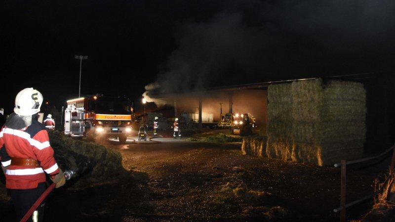 Muolen (SG): 20 tonnes de foin et de paille détruites par les flammes