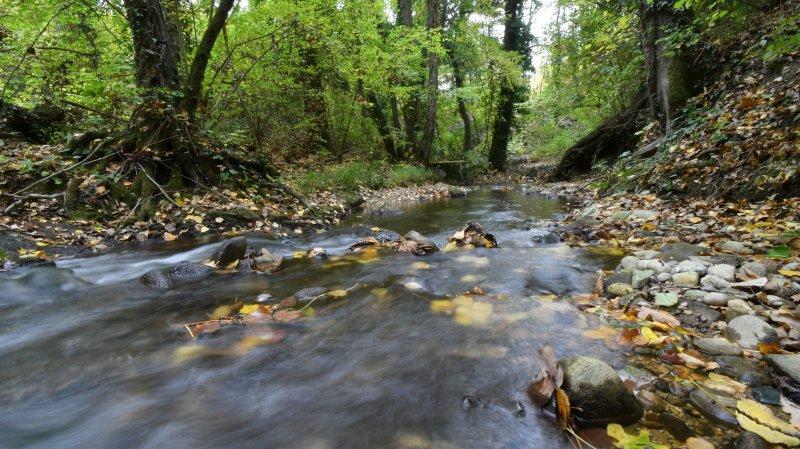 Face à la sécheresse, «les rivières de la région tiennent le coup»