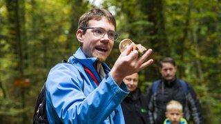 Ballens: cueillette de champignons guidée, en images