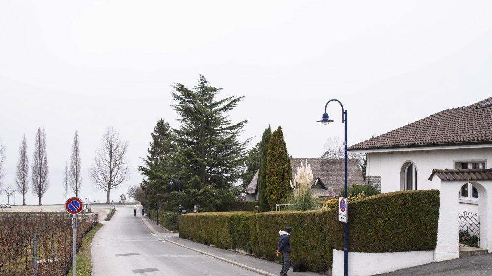 L'avenue est actuellement limitée à 50 KM/h une vitesse trop élevée selon certains habitants.