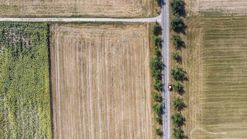 La sécheresse a fortement impacté les récoltes en 2018.