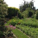 Soirées conseils tout public au jardin