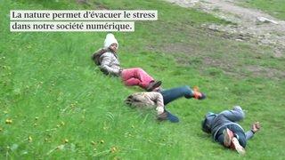 Etude: aller dans la nature réduit le stress