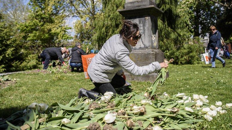 Le public a répondu présent à la vente des bulbes de tulipes à Morges.