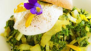 Tartine d'œuf poché aux côtes de bettes umami