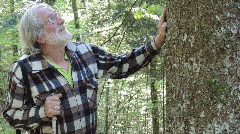 Chroniques jurassiennes : L'homme et la forêt