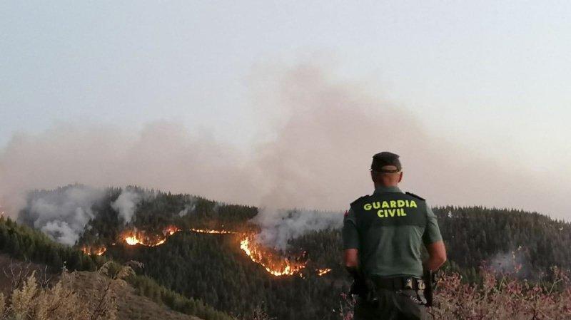 Incendies en Espagne: 1000 hectares en fumée sur l'île de Grande Canarie