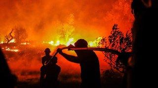 Portugal: plus de 1100 pompiers mobilisés pour lutter contre des feux de forêt