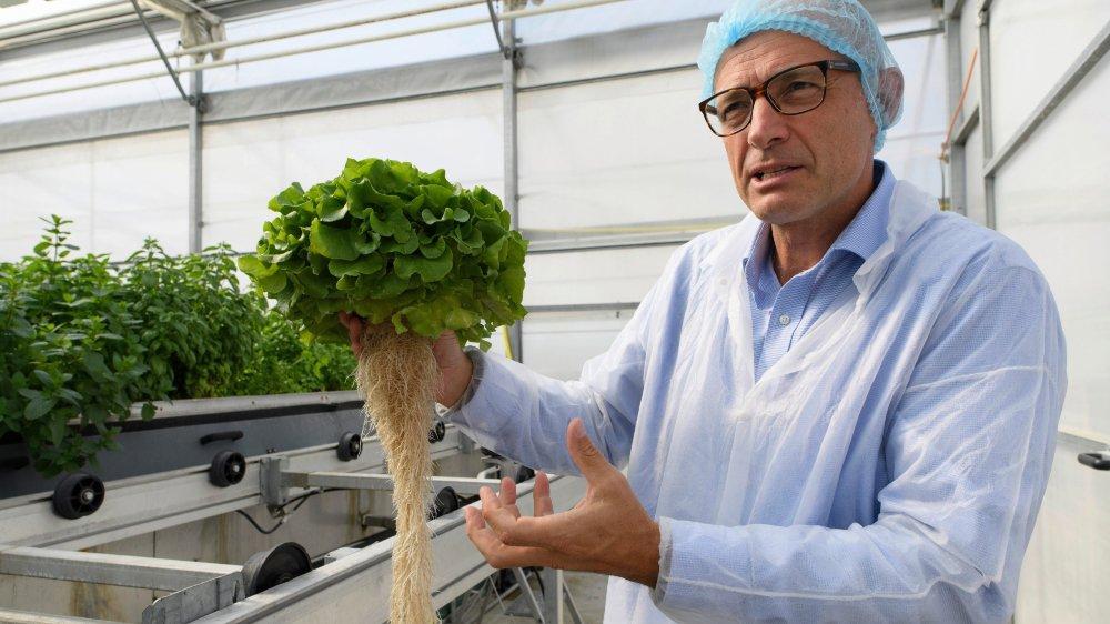 Les jeunes pousses de l'agro-alimentaire se nourrissent de la prise de conscience des consommateurs sur les produits qui arrivent  dans leur assiette. Ici Serge Gander de Combagroup, près d'Yverdon (lire ci-dessous).
