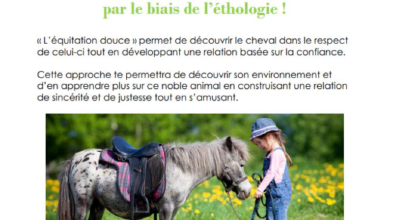 Journée découverte sur l'équitation éthologique