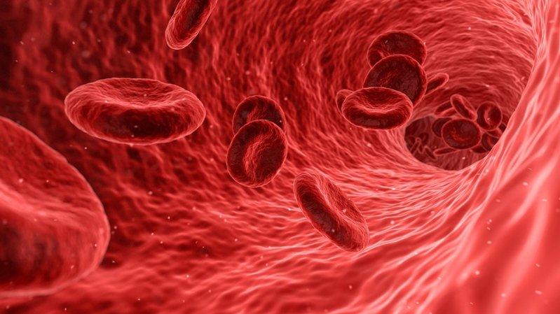 Le mini-robot peut éliminer les caillots de sang dans le cerveau.