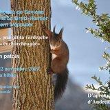 Lecture en patois : Broun.na, ona pitita vèrdzache