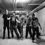 MyBand - En concert / Punk-Rock