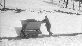 Il y a 80 ans, La Côte vendangeait sous la neige
