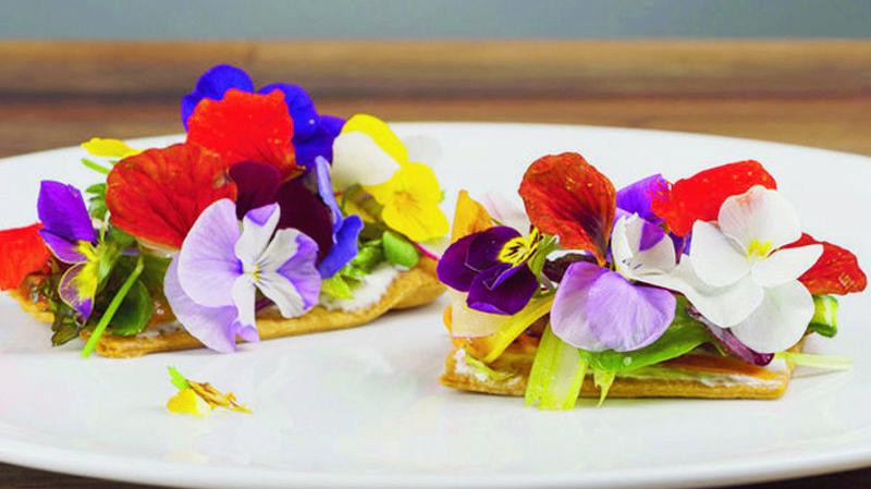 Tartelette florale, chèvre frais et légumes de saison