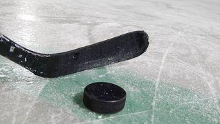 Hockey: Fribourg se paie Lausanne, Genève ramène un point