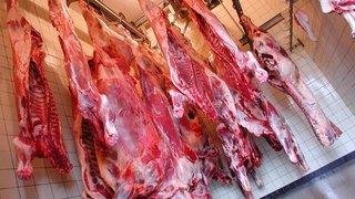 Acheter sa viande chez l'éleveur a ses avantages