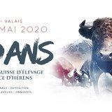 Finale Nationale de la Race d'Hérens 2020