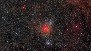 Espace: l'étoile Bételgeuse pourrait bientôt exploser en supernova